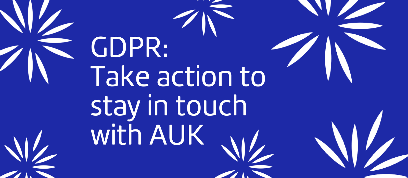 Stay in Touch with AUK: Take Action Today